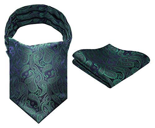 HISDERN Set quadrato da taschino con ascot intessuto jacquard floreale cravatta da uomo
