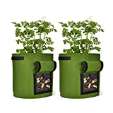Grow Bags 2 Pack 10 Gallons Potato Planter Bag, Strong Planted Barrels with Access Flap and Handles, for Garden Vegetable Potato Tomato Planting, Etc. (Green)