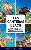 Las Canteras: Snorkelling Guide: Explore Gran Canaria's top underwater spot like a local (English...