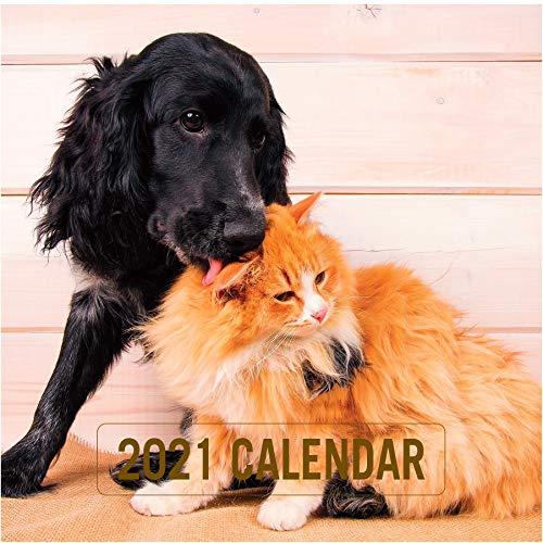 Edicards - Calendario da parete 2021, con cani e gatti, 30 x 30 cm