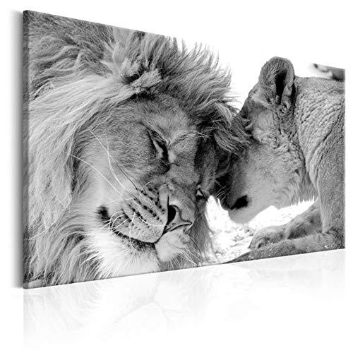 """HSFFBHFBH Cuadro en Lienzo Arte de Pared Grande Estampados de Leones Animal Salvaje en la Pared Cartel Familiar Imagen de decoración para Sala de Estar 60x80cm (23.6""""x31.5) Sin Marco"""