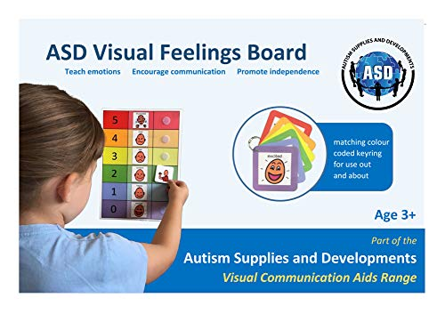 Visual ASD Feelings Board & Keyring