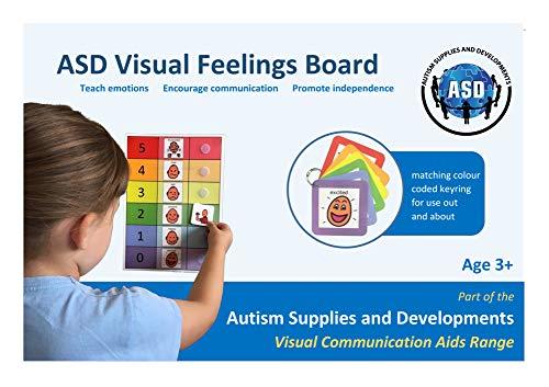 Visual ASD Feelings Board & Keyring