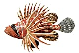 Awesome Acrylic Resin12 x 8' Long Lion Fish Wall Decor Hanging with Hanger on Back