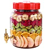 Barril De FermentacióN - Tanque Sellado De ExtraccióN AutomáTica De Enzimas De Frutas - Tanque Kimchi Sellado De Gran Capacidad con Grifo (TamañO: 10 litros),1kg