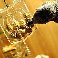 PQZATX オウムの給餌ボックスペットの鳥の飼育フィーダーボックスケージのスイングチュウのおもちゃのオウムの給餌訓練ツール