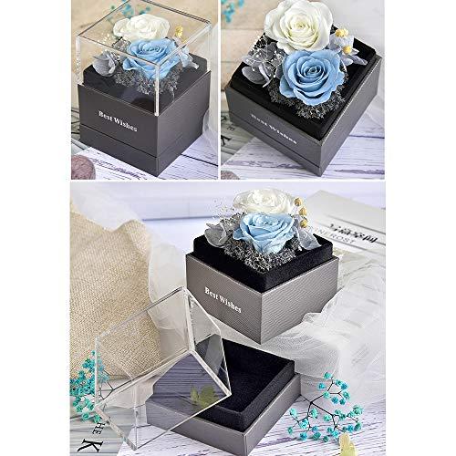 Heerda Infinity Rose - Die Ewige Rosa Square Rosen in Rosenbox Echte Premium Rosen Konservierte ewige Rose Konservierte echte rote Rose (Weiß)