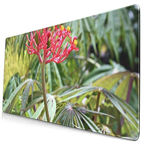 Gaming-Mauspad, Premium-strukturierte Mauspad-Pads, niedliches Mousepad für Spieler, Büro- und Heimblumen und Blätter der Pflanze Jatropha Dissected Multifida