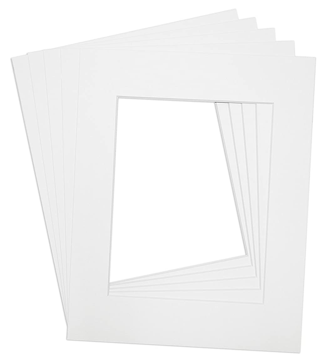 Golden State Art, Pack of 5, 16x20 Picture Mats Mattes, 8-ply, with White Core Bevel Cut for 11x14 Photo + Backing + Clear Bags, Color: White