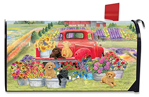 Briarwood Lane Spring Day Puppies Magnetic Mailbox Cover Dogs Standard
