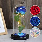 RECUTMS Beauty and The Beast Rose Kit,Blue Silk Rose That Lasts Forever in a Glass Dome with Led Lights,Gift for Mothers Day Valentine's Day Birthday Party Wedding Anniversary(Blue)