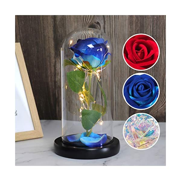 RECUTMS Beauty and The Beast Rose, Colorful Rose and Led Light in a Glass Dome for Mothers Day Valentine's Day Home Decor Holiday Birthday Party Wedding Anniversary