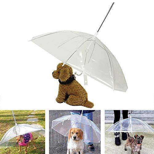 HYFDGV Faltbarer Welpenschirm Regenschirm Haustier Hund Regenmantel Montage Mit Leine Kette Walking Snow Regen Transparenter Regenschirm Poncho Wasserdichter Hundemantel