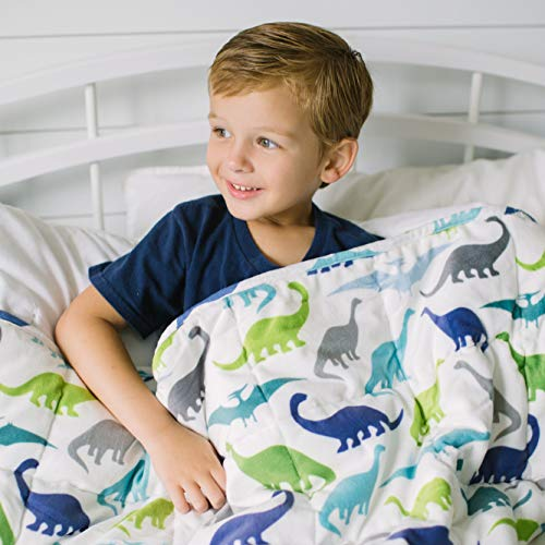 HomeSmart Products Weighted Blanket for Kids and Toddlers  5lbs 40x60  Dinosaur Print on One Side Grey on The Other  Ultra Soft Minky Material  Machine Washable