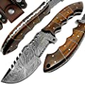 Best.Buy.Damascus1 Rose Wood 9.5'' Fixed Blade Custom Handmade Damascus Steel Tracker Hunting Knife Brass Pins Spacers Unique Beautiful File Work On Handel Come with Leather Sheath Prime Quality