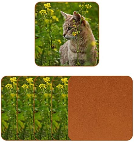 Coasters for Drinks Cute Cat Grass Floral Leather Square Mug Cup Pad Mat for Protect Furniture product image