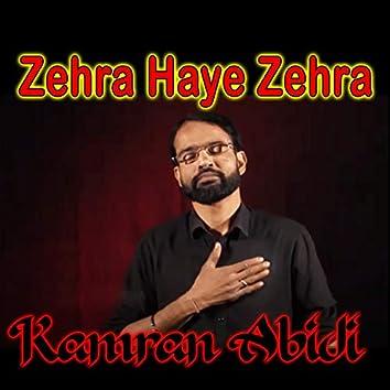 Zehra Haye Zehra - Single