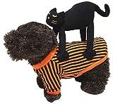 Petitebelle Disfraz de Halloween para mascotas (gato negro, pequeño)