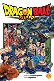 Dragon Ball Super, Vol. 13 (Volume 13)