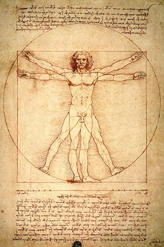 1art1 Leonardo da Vinci - Uomo Vitruviano, 1490 Circa Poster Stampa Geante XXL (120 x 80cm)