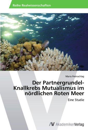 Der Partnergrundel-Knallkrebs Mutualismus im nördlichen Roten Meer: Eine Studie