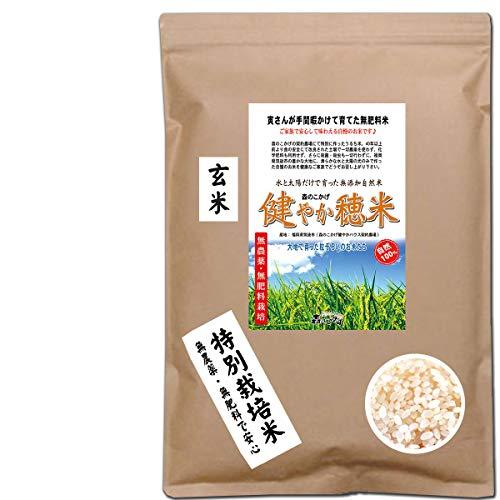 森のこかげ 健やか穂米 1kg (玄米) 無農薬 無肥料米