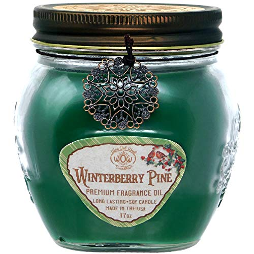Winterberry Pine 17 oz Jar Candle -Holiday Scented Gift by Way Out West