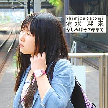 Kanashimiha Sonomamade