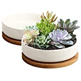 Succulent Pots, ZOUTOG 6 inch White Ceramic Flower Planter Pot with Bamboo Tray, Pack of 2 (Plants NOT Included)