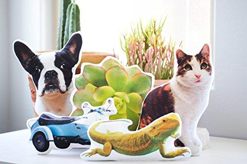 Personalized Pet Photo Pillow, College Student Gift, Pet Memorial, Pet Loss, Rainbow Bridge, Cat Pillow, Dog Pillow, Animal Pillow, Memory Pillow, Pet Portrait Pillow