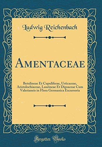 Amentaceae: Betulineae Et Cupuliferae, Urticaceae, Aristolochiaceae, Laurineae Et Dipsaceae Cum Valerianeis in Flora Germanica Exc