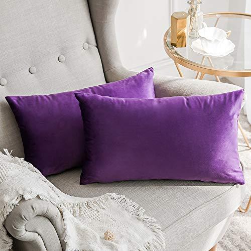 MIULEE Terciopelo Funda de Cojine Funda de Almohada del Sofá Throw Cojín Decoración Almohada Caso de la Cubierta Decorativo Almohadas para Sala de Estar 30x 50cm 12 x 20 Pulgadas 2 Pieza Púrpura