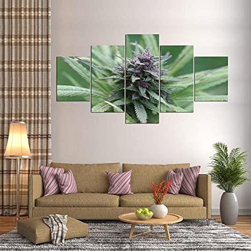 Granja De Cannabis De Marihuana Purple Bud Cuadro sobre Impresión Lienzo 5 Piezas Marco 150X80Cm HD Arte De Pared Modulares Sala De Estar Dormitorios Decoración para El Hogar Póster Regalo