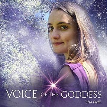 Voice of the Goddess (feat. J Rokka)