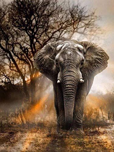 LFZY hölzernes Puzzle 5000 Stück-erwachsenes Kinderspielzeugspiel Klassische pädagogische pädagogische Dekoration Geschenk-Sonnenaufgang Elefant