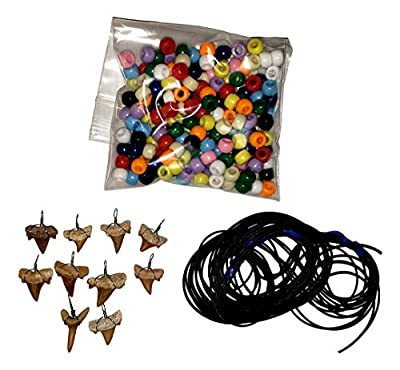 Make-Your-Own Fossil Shark Tooth Necklace Kits - Set of 10 - Great at Home Activity!
