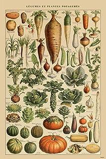 Black Framed or Unframed Art Print in Various Sizes Vintage Poster of Food Label Garden Gate Selected Vegetables Stretched Canvas