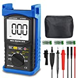 Digital Insulation Resistance Tester,AP-6688B Auto Range Megohmmeter 1999 Counts LCD Display 500/1000/2500/5000V Voltage,1MΩ~200GΩ Resistance Testing with Data Hold Backlit for Motor Cables Switches