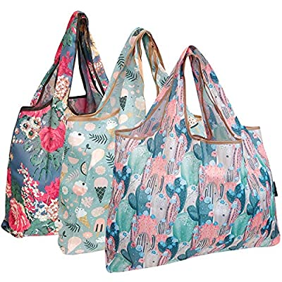 allydrew Large Foldable Tote Nylon Reusable Grocery Bag, 3 Pack, Flowers & Cactus