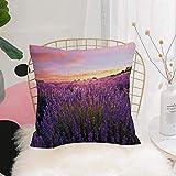 Purer Weicher Kissenbezug Kissenhülle Set,Lavendel, ländliche Wiese in voller Blüte Sommer...