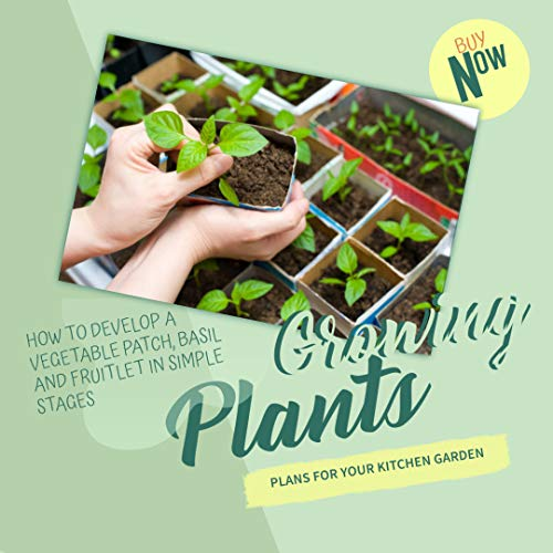 Growing Plants Plans For Your Kitchen Garden How To Develop A Vegetable Patch, Basil And Fruitlet In Simple Stages (English Edition)