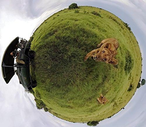 GoPro Fusion - Appareil Photo Numérique VR Étanche 360 avec Vidéo Sphérique CHDHZ-103 - 8