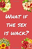What If The Sex Is Wack?: 90DF Fan Notebook