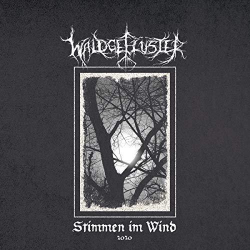 Stimmen im Wind 2020 (Lp+CD) [Vinyl LP]