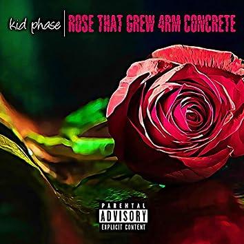Rose That Grew 4rm Concrete