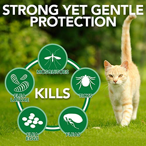Vet's Best Flea & Tick Home Spray for Cats | Flea Treatment for Cats & Home | Flea Killer with Certified Natural Oils | 32 oz