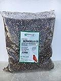 Miscela di semi germogliabili per canarini e uccelli granivori in genere Confezione da 5 Kg. Composizione: niger, frumento cardo bianco, canapa, rapanello, colza, lattuga bianca, mung verdi