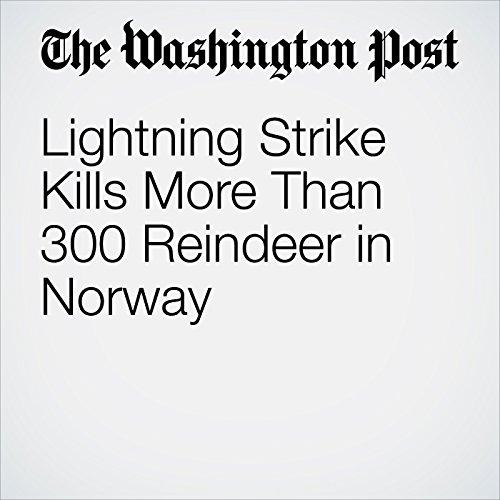 Lightning Strike Kills More Than 300 Reindeer in Norway audiobook cover art