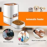 Zoom IMG-2 sailnovo alimentatore automatico per cani