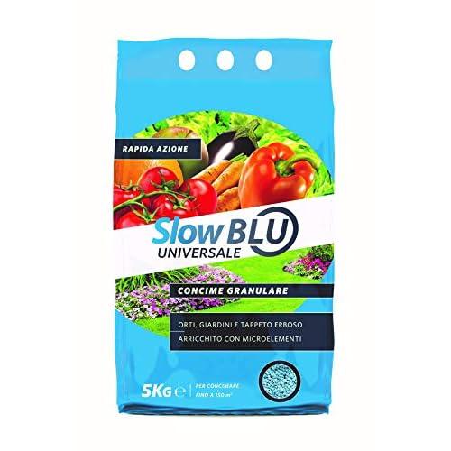Valagro Slow Blu Concime Rapida Cessione Frutta Ortaggi Prato Erbetta Concime granulare a cessione Rapida per Un Raccolto Abbondante di Frutta ed ortaggi 5 kg